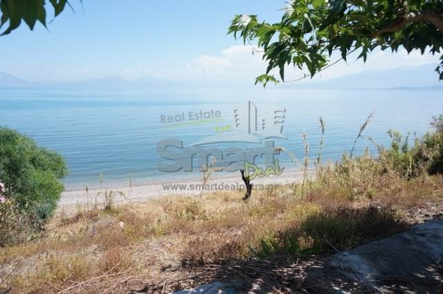 (For Sale) Land Plot || Achaia/Dymi - 550 Sq.m, 80.000€